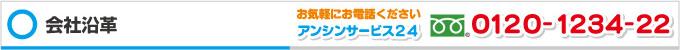 アンシンサービス24 会社沿革